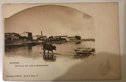 BURGOS / DETALLE DE LOS ALREDEDORES 1900 - Burgos