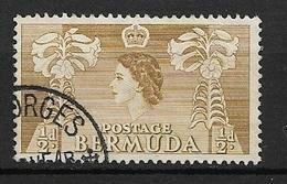 BERMUDA   1953 Local Motives And Queen Elizabeth II   USED   Lilium Longiflorum - Bermuda