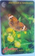 132CATB Donkey Eye Butterfly  (number No Slash) - Antigua And Barbuda
