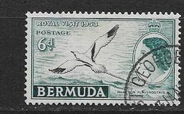 BERMUDA   1953 Local Motives And Queen Elizabeth II    USED BIRDS Phaeton Lepturus - Bermuda