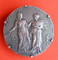 Fenaison Semaille Médaille Argent Montée En Broche Associations Agricoles Par Alphée Dubois 39gr Diam 4cms - France