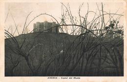 ANDRIA  - CASTEL DEL MONTE - TAVERNA GIOVANNI SFORZA -  1932 - Andria