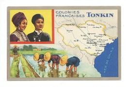 Indochine TONKIN Riz Carte Chromo 14 X 9 Cm Bien Pub: LION NOIR  Colonies Françaises - Autres