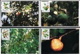 BOPUTHATSWANA, 1991, Wild Fruit,  Mint Maxicards, Nr(s.) 90-93 - Bophuthatswana