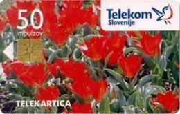 SLOVENIA SCHEDA TELEFONICA Tulipani / Enkratno Bujenje PO Tel. - Schede Telefoniche