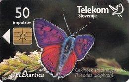 SLOVENIA SCHEDA TELEFONICA Cekinček Spreminjevalček / IPS - FARFALLA - Schede Telefoniche