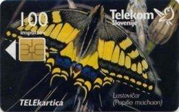SLOVENIA SCHEDA TELEFONICA Lastovičar / Telefonski Predal Želja Za Rojstni Dan  - FARFALLA - Schede Telefoniche
