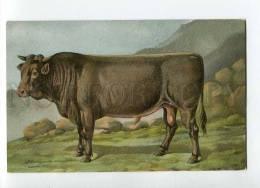 270026 RUSSIAN BUNGART Black Bull Vintage BAGGOVUT Postcard - Künstlerkarten