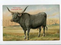 270027 RUSSIAN BUNGART PODOLSK Podolsky Bull Vintage BAGGOVUT - Künstlerkarten