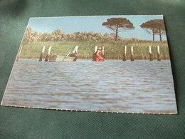 PESCA PESCATORE DI MESTIERE AI CONFINI DEL GRAN BOSCO DELLA MESOLA NEL DELTA FERRARESE DEL PO FIUME EMILIA ROMAGNA - Pesca
