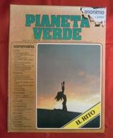 Rivista PIANETA VERDE, Anno II, N. 14, Marzo 1981, Speciale IL RITO - OTTIMA RVS-1 - Prime Edizioni