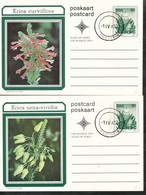 Postkarte - RAS - Südafrika  2. Postkarten   Blumen - Südafrika (1961-...)