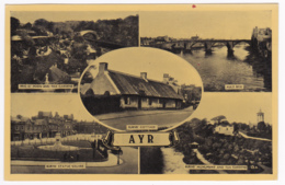 """Ayr - Multivues, 5 Vues """"Brid O Doon And Tea Gardens, Burn's Cottage, Auld Brig, Burn's Statue Square & Monument And Tea - Ayrshire"""