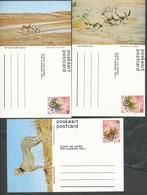 Postkarte  - SWA   3.  Postkarten   Mit Tieren  Postfrisch - Namibia (1990- ...)