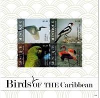 MDB-BK22-384 MINT PF/MNH ¤ MUSTIQUE GRENADINES 2011 SHEET ¤ BIRDS OF THE WORLD OISEAUX BIRDS AVES VOGELS VÖGEL - Zangvogels