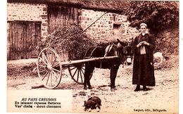 Au Pays Creusois. Femme Tricotant Avec Ane Attelé à Une Carriole. - France