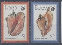 Belize : N° 468 Et 469 Xx Neuf Sans Trace De Charnière Année 1980 - Belize (1973-...)
