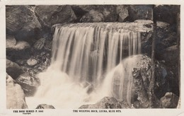 Blue Mountains NSW Australia, The Weeping Rock Leura, Rose Series P.5441 C1930s/40s Vintage Real Photo Postcard - Australia