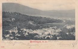 Weidlingau Wien Austria Suburb Neighborhood, View Of Town, C1890s/1900 Vintage Postcard - Other