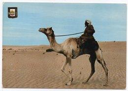 U.A.E.- BEDOU / CIRCULATED FROM BAHRAIN/BAHREIN - MANAMA CANCEL - 1978 - United Arab Emirates