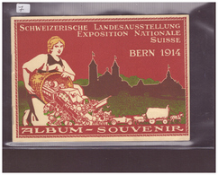 ALBUM SOUVENIR - SCHWEIZ. LANDESAUSSTELLUNG 1914 - EXPOSITION NATIONALE SUISSE 1914 - TB - BE Berne