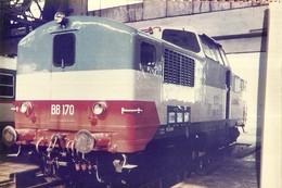 """1302 """" TRENI - RACCOLTA DI 60 IMMAGINI SU CARTA FOTOGRAFICA """" - Treni"""