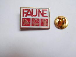 Beau Pin's  , Chien , Faune , Poisson , Perroquet - Animaux
