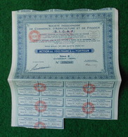 Six Actions De Cent Francs - Société Indochinoise De Commerce, D'Agriculture Et De Finance - SICAF - Agriculture