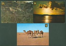 Lot 9 Western Sahara RASD SADR Sahara Espanol A.O.E. Aaiun - Sahara Occidental