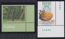 Macedonia 1999 Christmas, MNH (**) Michel 180-181 - Mazedonien