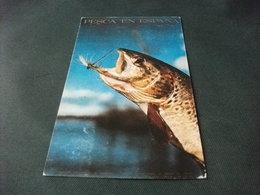 PESCA EN ESPANA PESCE FISH FRANCOBOLLO COMMEMORATIVO SPAGNA - Pesci E Crostacei