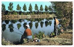 Environs De Blanzy - Montchanin - étang De Parizenot - France