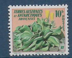 TAAF - YVERT N° 11 ** / MNH - FLORE - COTE = 15 EUR. - Unused Stamps