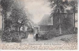 Molen Van Schoonhoven 1903 - Aarschot