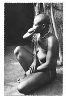 ETHNOLOGIE Type De Femme Sara Kabo Seins Nus Femme Plateau - Central African Republic