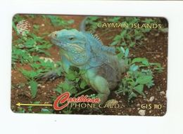 CAYMAN ISLANDS Magnetic GPT Phonecard 13CCIB - Kaimaninseln (Cayman I.)