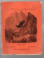 Cahier D'écolier Avec Couverture Illustrée : Histoire Naturelle N°65 : L'araponga Caronculé  (PPP9430) - Animaux