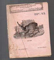 Cahier D'écolier Avec Couverture Illustrée : Encyclopédie De L'enfance N°50 : Cerf Axis  (PPP9436) - Animaux