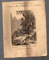 Cahier D'écolier Avec Couverture Illustrée : Hstoire Naturelle N°265 La Bartavelle  (PPP9439) - Animals