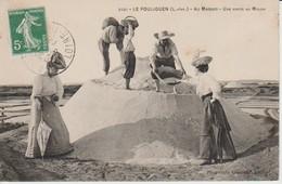 44POU3 - LE POULIGUEN - Au Marais , Une Visite Au Mulon - Le Pouliguen