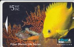 Fiji - Golden Damsel Fish - 10FJC - Fiji