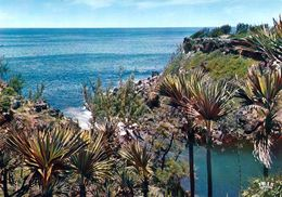 1 AK Insel Reunion * Die Küste Bei Manapany - Übersee-Departement Von Frankreich - Insel Indischer Ozean * - Reunion