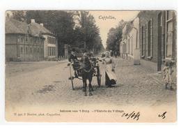 Capellen   Inkoom Va 't Dorp - L'Entrée Du Village  N.942 F.Hoelen  1903 - Kapellen