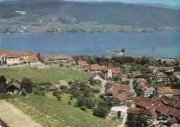 ERLACH-CERLIER - BERN - BERNE SUISSE - ORIGINALE CPSM DE 1965. - BE Berne
