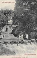 31)  Bassin De SAINT  FERREOL - Prés Revel  - La Grande Cascade Dans Le Parc - Saint Ferreol