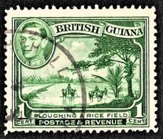 British Guiana - Scott #230 Used (3) - British Guiana (...-1966)