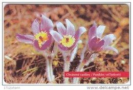 50U FLOWERS 05/96 MINT In BLISTER - Slovaquie