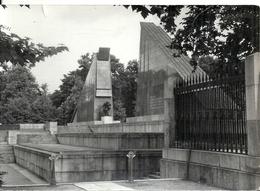 GERMANY - ALLEMAGNE - EX DDR - BERLIN TREPTOW - Photo 11 X 15 Cm - Mémorial Soldats Soviétiques - Brandenburg