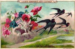 1 Liebig Advertising Card,  Edition : SVEZIA Zweden  S 380 Anno C1893, Fleurs, Oiseaux Et Papillons - Liebig