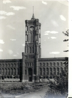 GERMANY - ALLEMAGNE - EX DDR - BERLIN EST - Photo 11 X 15 Cm - Rathaus - Mairie - Brandenburg